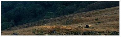 仁化万石山自然保护区