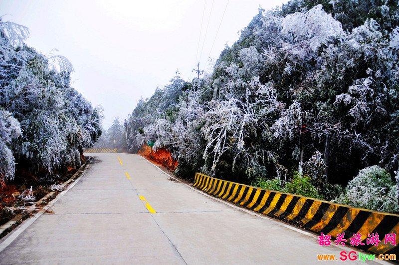 南岭国家森林公园冰挂