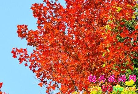 韶关秋季旅游好去处