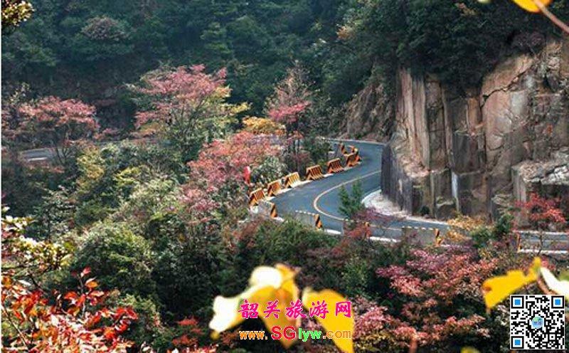 南岭国家森林公园秋天