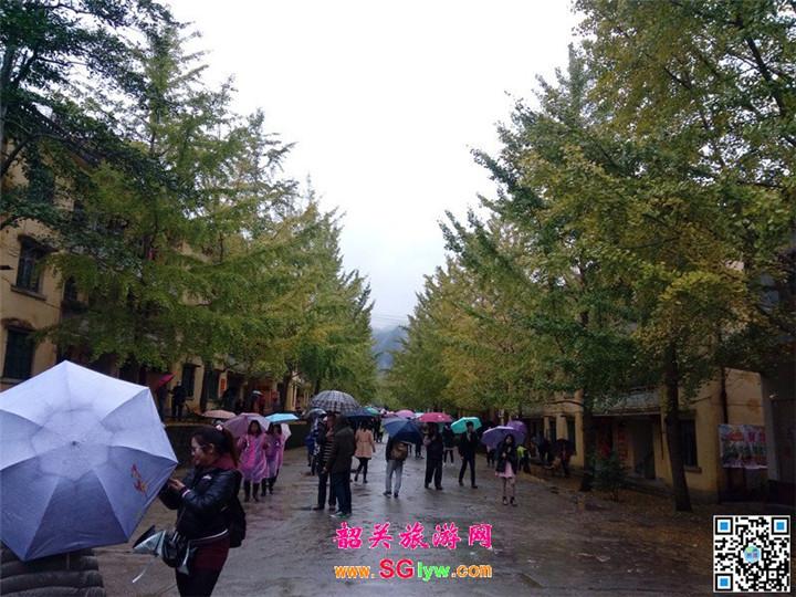韶关南雄帽子峰林场