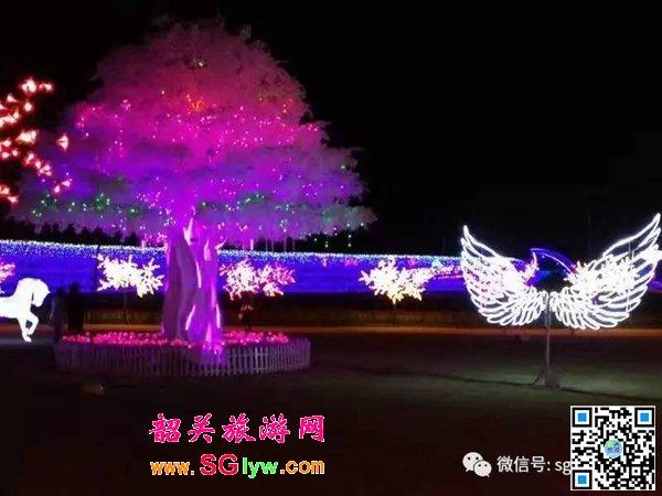 韶关大唐花海灯光节
